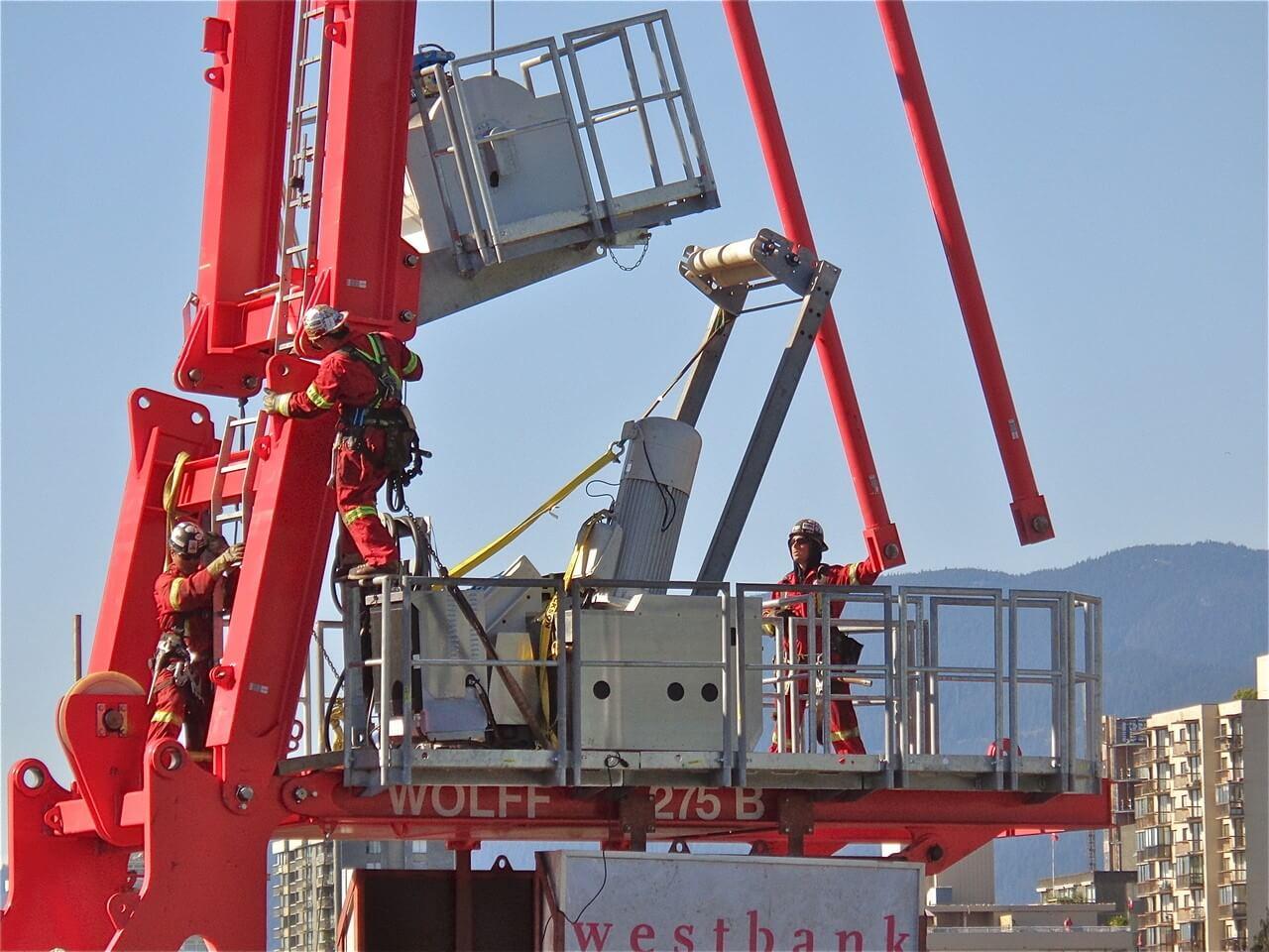 u.s.a.cranes