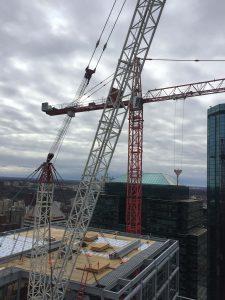 cranes north america